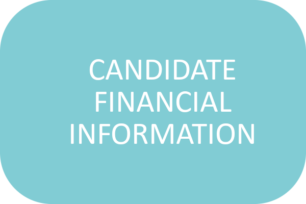 Candidate Financial Information