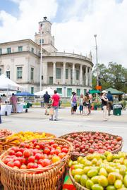 Table of fruits and vegetables in front of the coral gables city hall building.